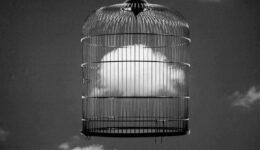 γυαλινα-κλουβιά