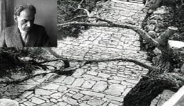 πικιωνης-images-1α