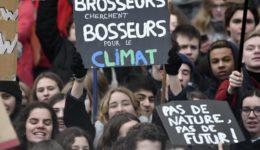 Βρυξέλλες, διαδήλωση