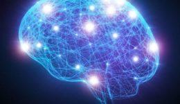 εγκεφαλικά σήματα