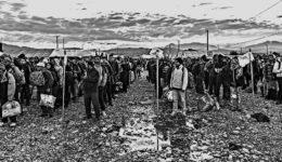πρόσφυγες-selida_3