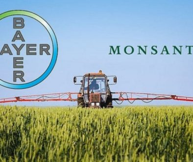 bayer_monsanto