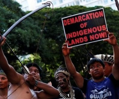brazil_apib_protest.jpg_1718483346