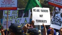 farmers.jpg_1718483346