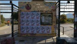 kke_fimosi_2